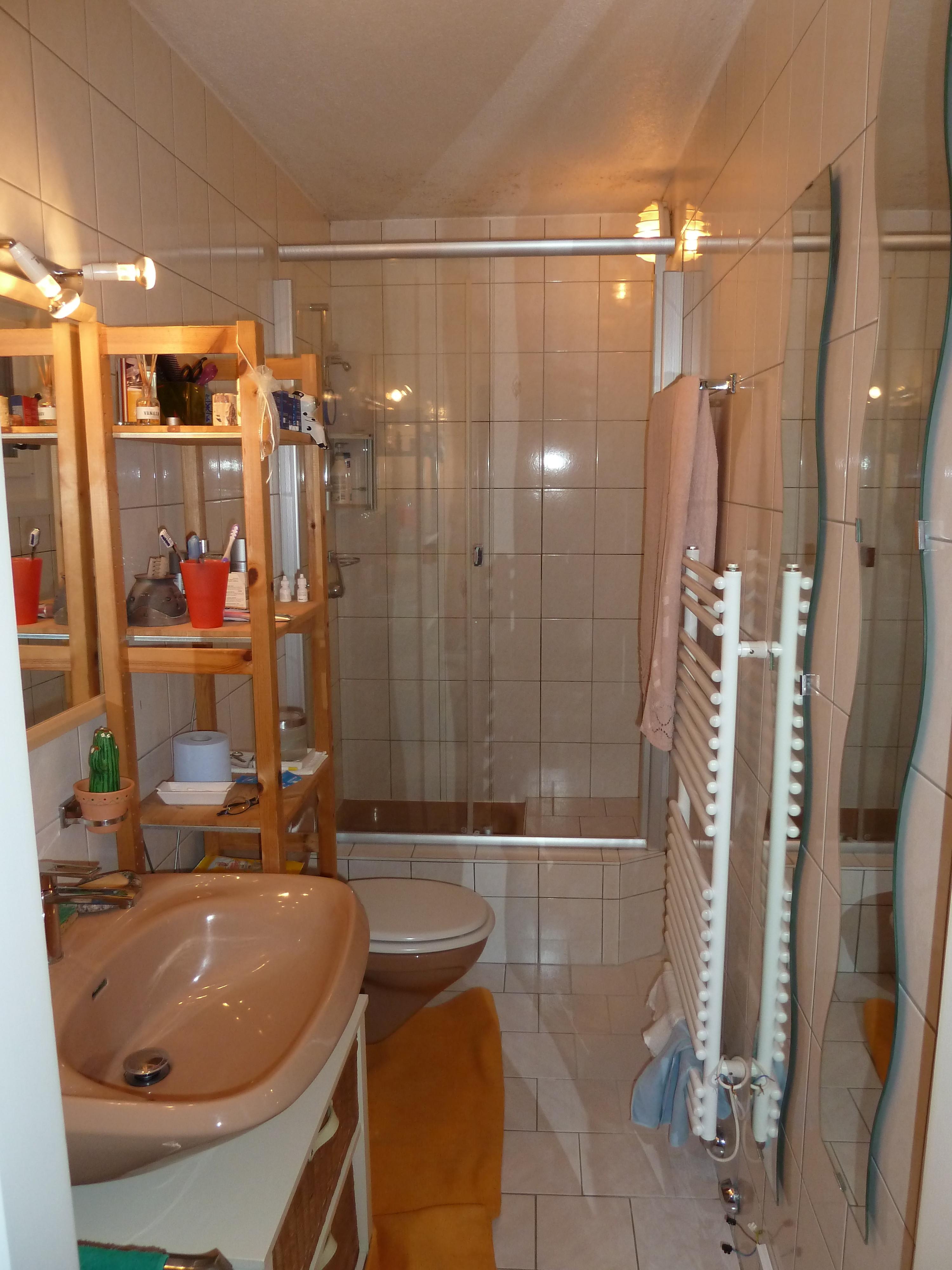 Une salle de bains avant